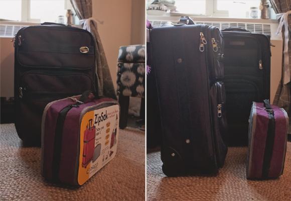 biaggi zipsak fold away luggage