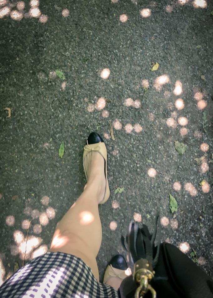 Walking through Central Park